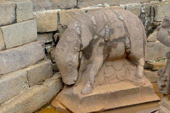 Mahabalipuram e Kanchipuram in un