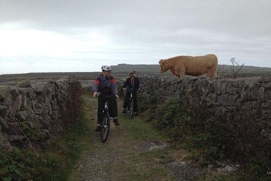 Erkunden Sie den Burren auf...