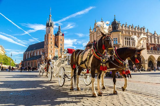 One day Cracow tour