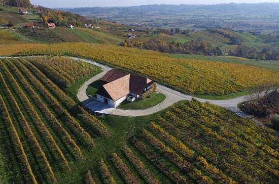 Sparkling and premium wines - Daily departure from Ljubljana