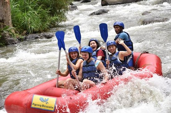 Rafting en eau vive à Ubud avec...