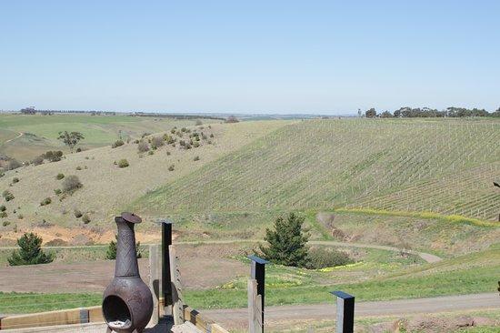 Bannockburn, Australie: View from Clyde Park Vineyard bistro