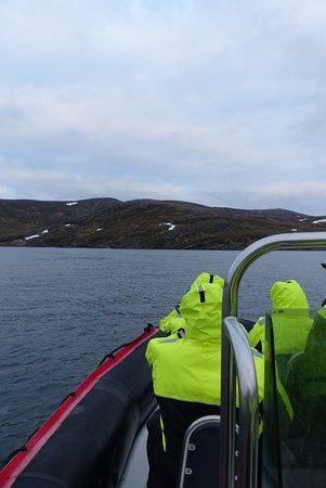 Skarsvag, นอร์เวย์: Boat trips!
