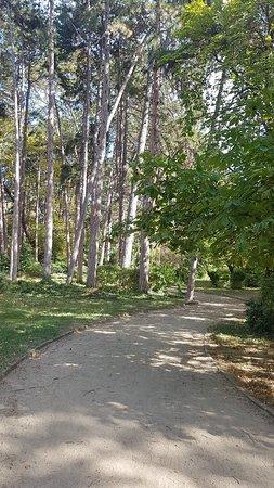 Bilde fra Townpark - Градски парк