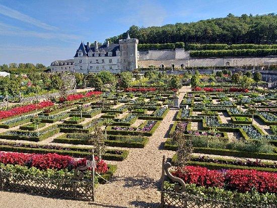 Château de Villandry : 20180928_121047_large.jpg