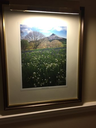 Great Broughton, UK: Very tasteful pictures of local scenes in the corridors- all separately illuminated.