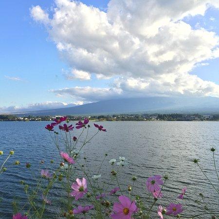 Lake Kawaguchiko: photo0.jpg
