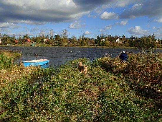 Tver Oblast, Russland: река Хотча, недалеко от моста