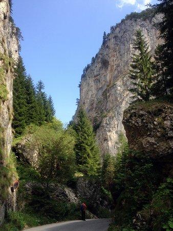 Provincia de Blagoevgrad, Bulgaria: Триградское ущелье