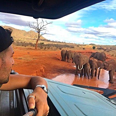 Safari Kenya 360: photo0.jpg