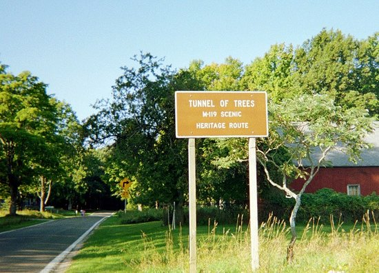 the entrance to the tunnel of trees in cross village mi