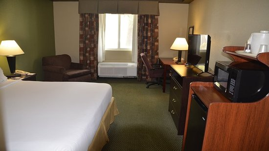 Holiday Inn Express & Suites West Palm Beach Metrocentre: Guest room