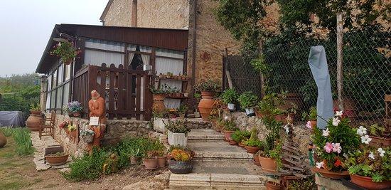 il giardino Foto