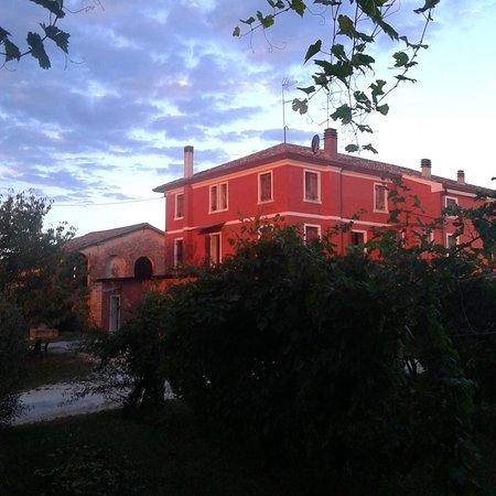 Conegliano, Ιταλία: Zinto