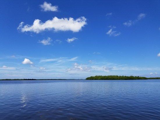 Gulf Coast Kayak: Beautiful View!