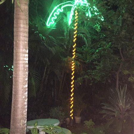 CocoLaPalm Resort: photo2.jpg