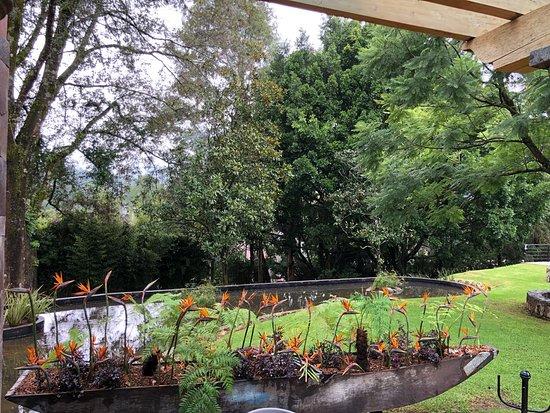 Contamos con grandes y hermosos jardines - Picture of Unico Avandaro Hotel Boutique, Valle de Bravo - Tripadvisor