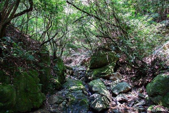 Mitarai Waterfall