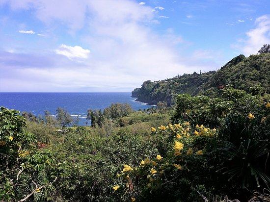 Laupahoehoe, HI: Scenic view