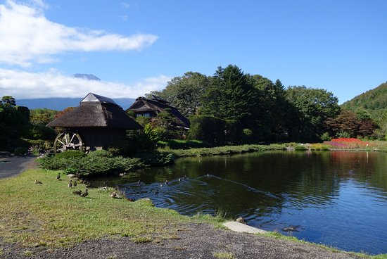 Hannoki Forest Museum / Sokonuke Pond