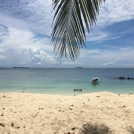 Pulau Selingan, Malaysia: photo1.jpg
