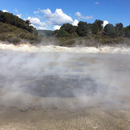 Tikitere, Nueva Zelanda: photo3.jpg