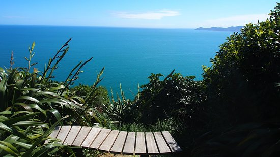 Paekakariki, Neuseeland: The perfect resting seat