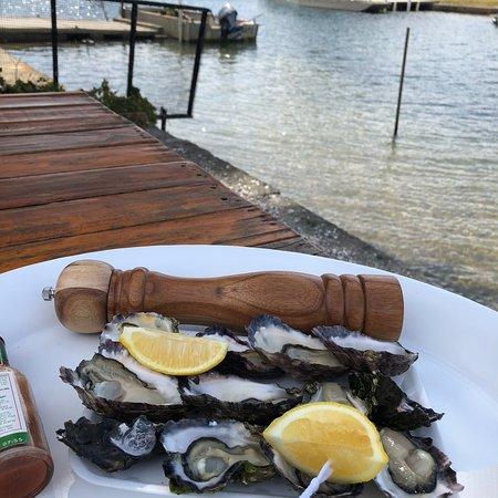 Jim Wilds Oyster Service: photo1.jpg