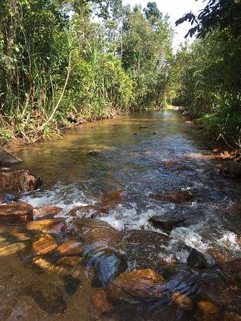 stream on the trekking way