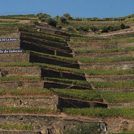 Jorge Barefoot - Wine & Tours: photo4.jpg