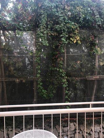 Art Hotel Gran Paradiso: View from Balcony