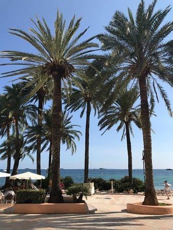 Hotel Playasol Lei Ibiza: Strand
