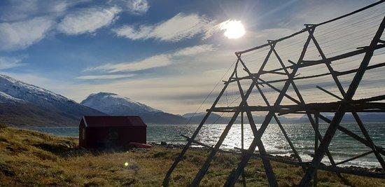 Olderdalen, Norwegen: 20180929_131221_large.jpg