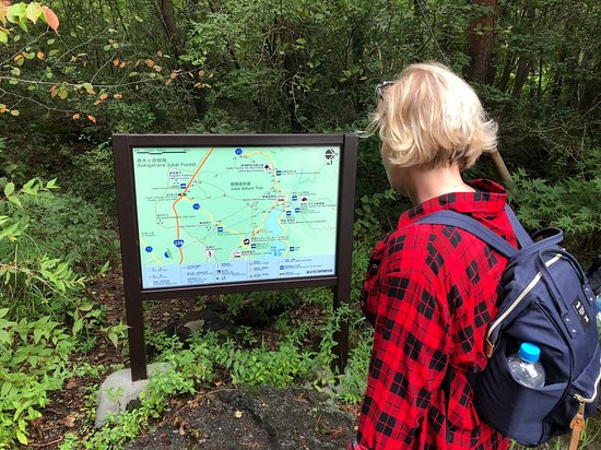 Aokigahara Forest: Trailhead map