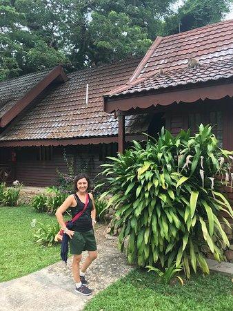 Nel cuore della giungla secolare malese