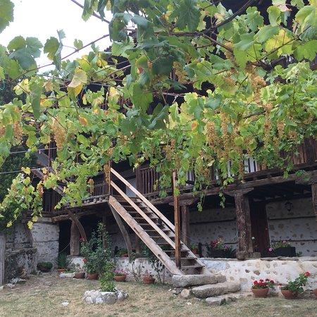 Rozhen Monastery: photo2.jpg
