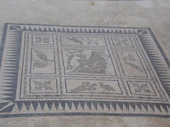 Castelleone di Suasa, Italija: mosaico