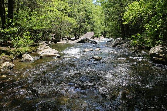 Emery Creek Trail