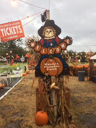 Lawrenceville, Джорджия: RANDY'S PUMPKIN PATCH