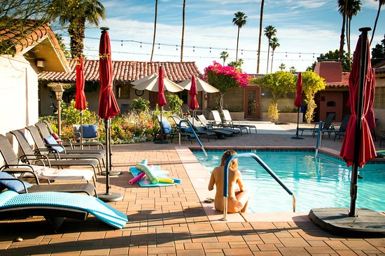 Greater Palm Springs, Kalifornien: The Terra Cotta Nude Resort and Spa has a beautiful pool area. Guests love the resort.