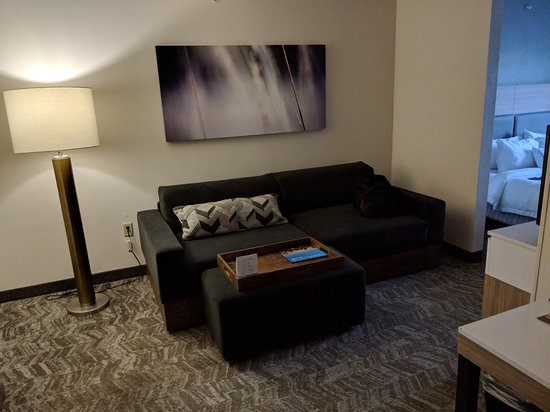 SpringHill Suites Charlotte Concord Mills/Speedway: Comfortable sitting area.