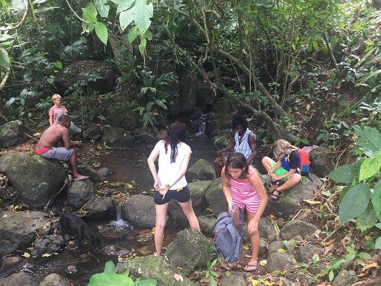 Portobelo Explorer: catching fresh water shrimp for dinner