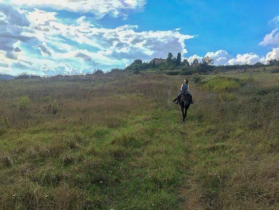 Radicondoli, Ý: Beautiful horseback ride