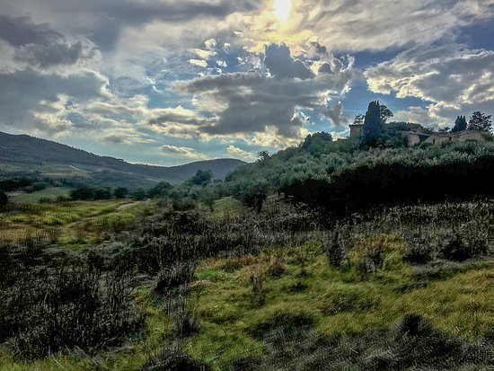 Radicondoli, Italie: Tuscan countryside