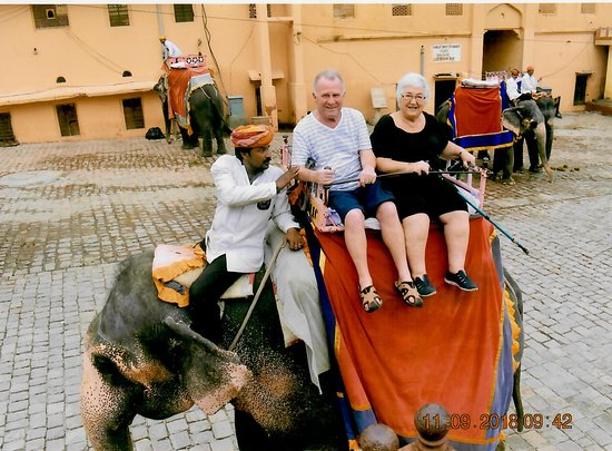 Trinetra Tours: Taking the elephant to the top of Amber Fort, Jaipur
