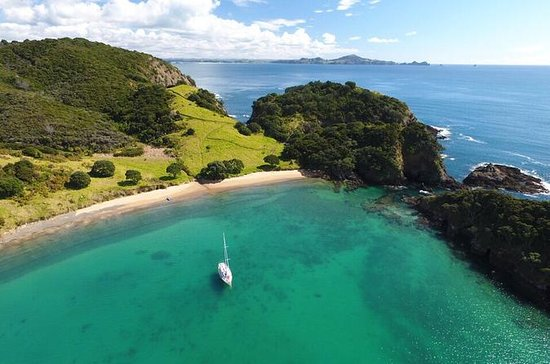 Full Day Sailing in the Bay of Islands