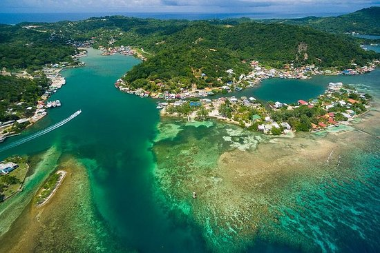 Best of Roatan Island Tour and...