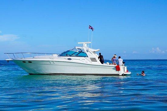 Sunset Sea Ray Cruiser