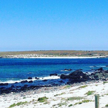 Punta Choros Φωτογραφία