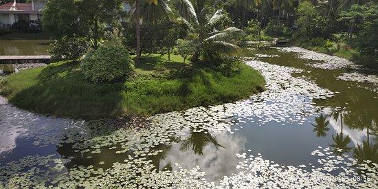 Foto de Amalapuram